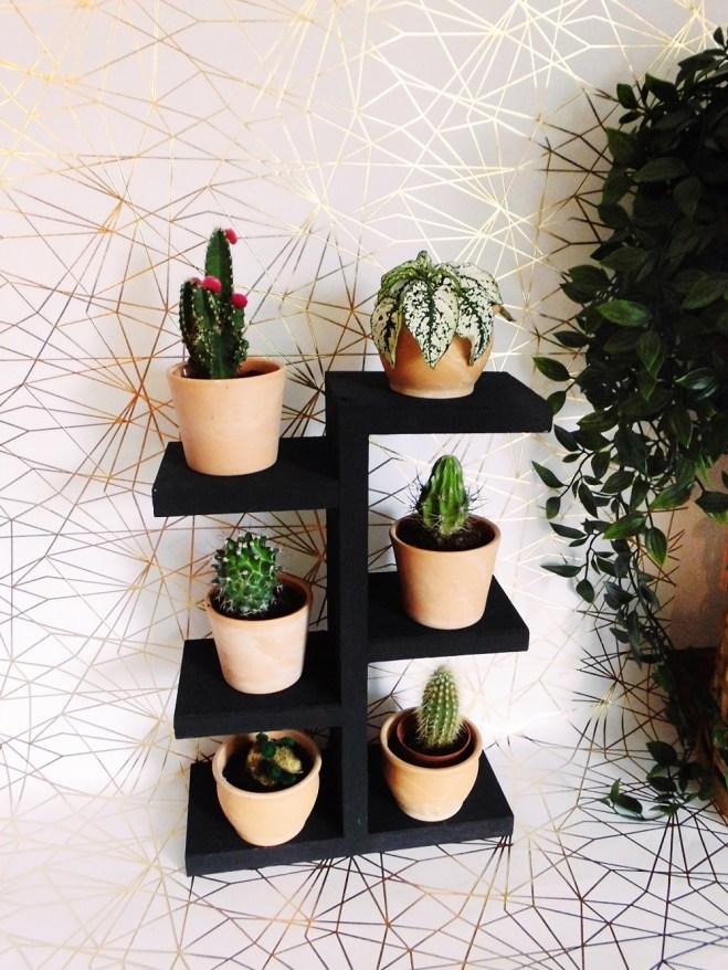 DIY Regal für Pflanzen wie Mini Kakteen ganz einfach selber bauen (7)