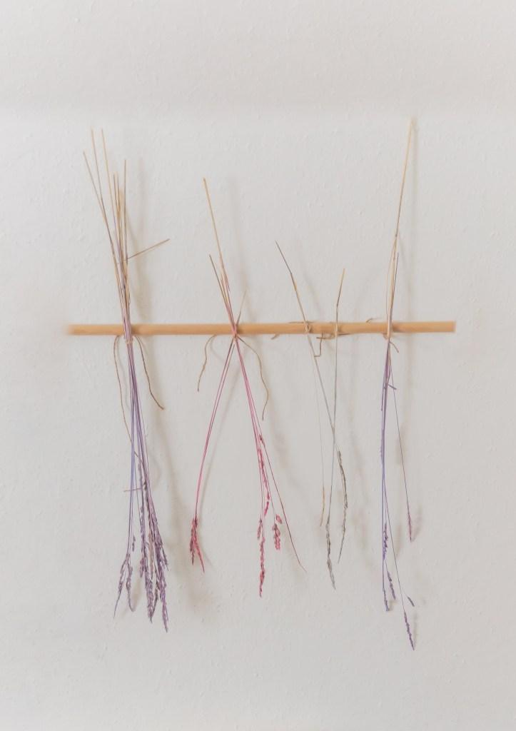 Trockengräser färben
