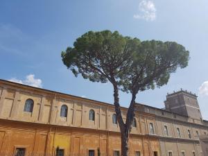 3. galerie musee vatican (24)