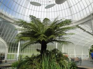 Botanic Garden, Glasgow