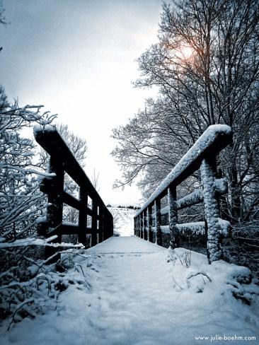 the bridge into the light