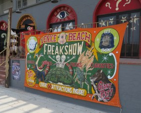 freak show, venice beach