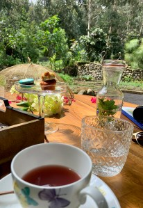 High Tea at Gorilla's Nest, Rwanda