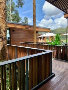 Gorilla's Nest, Rwanda