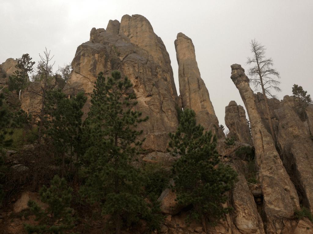 Custer State Park Granite Peaks