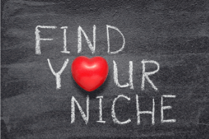 Meaning Of Niche