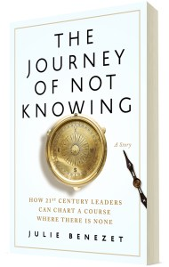 The Journey of Not Knowing book cover