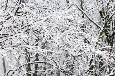 03.25.13 | spring snow