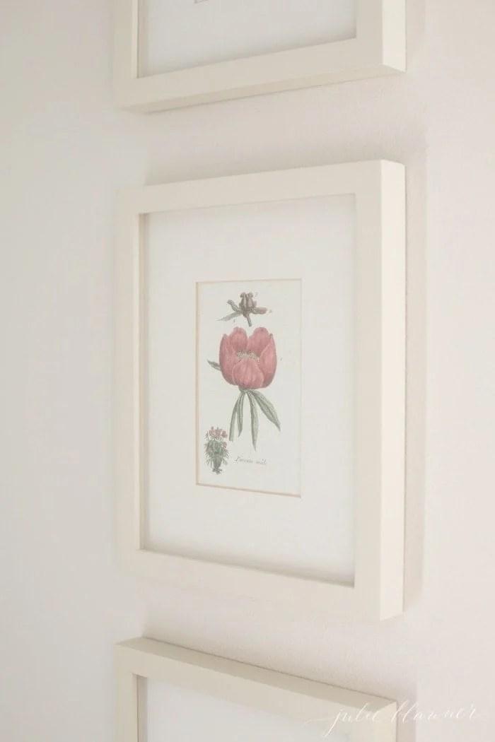 diy wall decor botanical prints