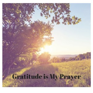 Gratitude is My Prayer, julie boyer, the grateful entrepreneur