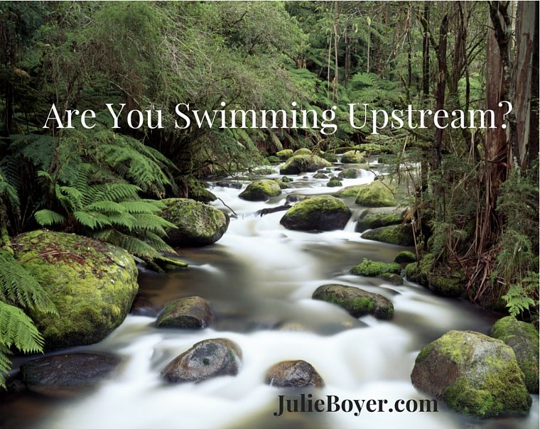 Do You Feel Like You Are Swimming Upstream?
