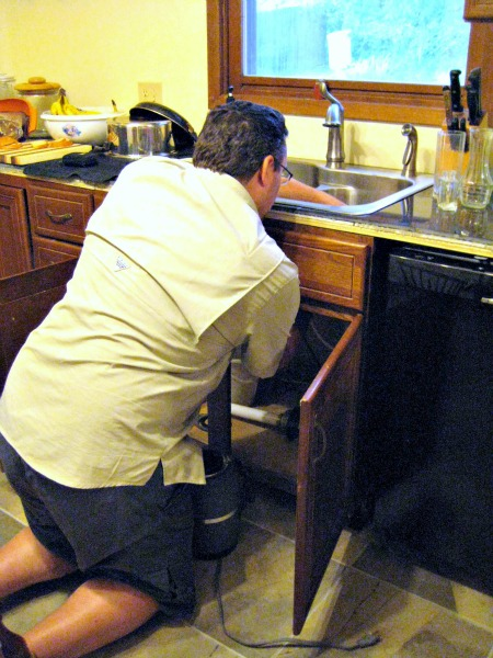 I fondly remember July 2012 as the month of a new garbage disposal.