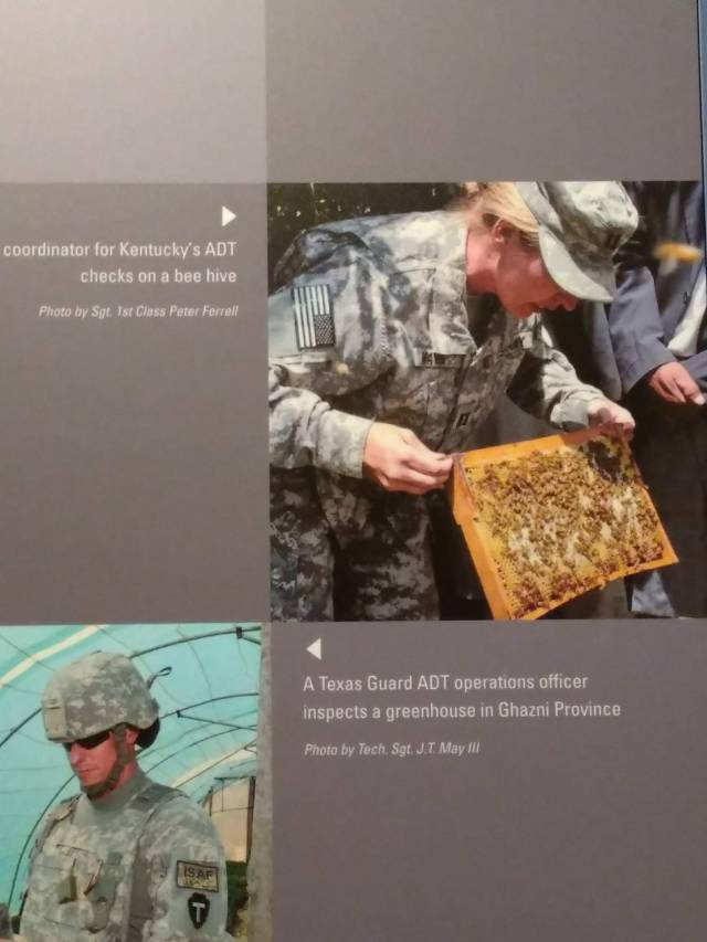 national guard, honey bees