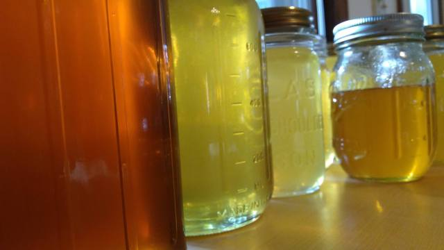 jars of honey of different colors