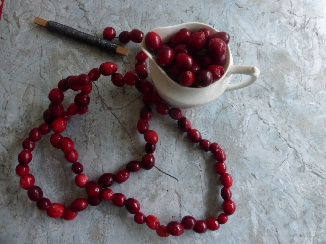 DIY_cranberries