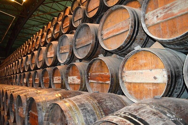 Moscatel wine ageing in oak barrels, Quinta da Bacalhôa, Azeitão