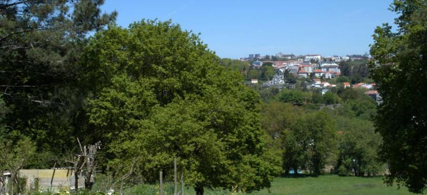 First glimpse of Santiago de Compostela