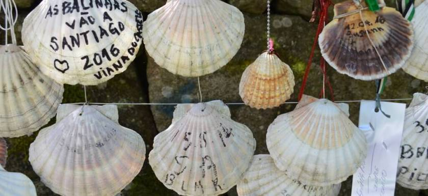 Pilgrims' scallop shells with messages, Portuguese Way of St. James