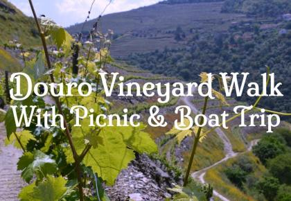 Douro Walking tour. Vineyard walk, picnic and boat trip