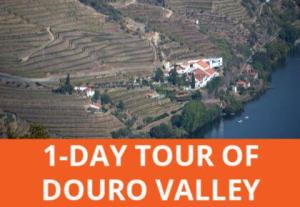 Day trip from Porto to Douro Valley
