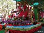Dragon fruit float, Suoi Tien, Vietnam