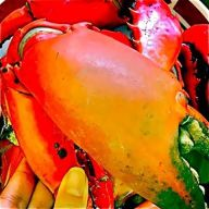 crab lunch
