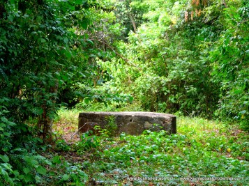 Diani Plot for sale sweet water