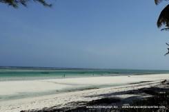 beach-to-south