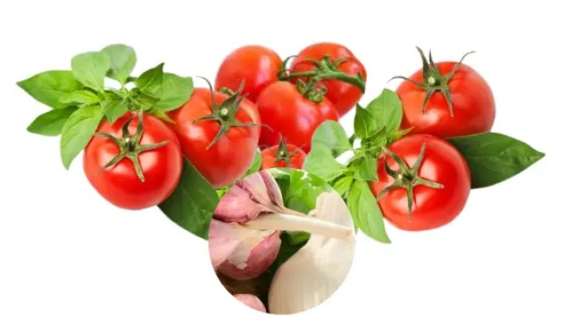 Tomato & Basil Sauce with a Difference