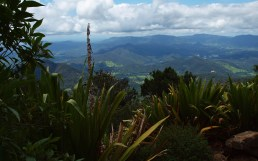 View from Mt Warning on a Sunny Day