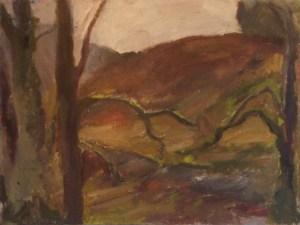Woodland, Aberllefenni
