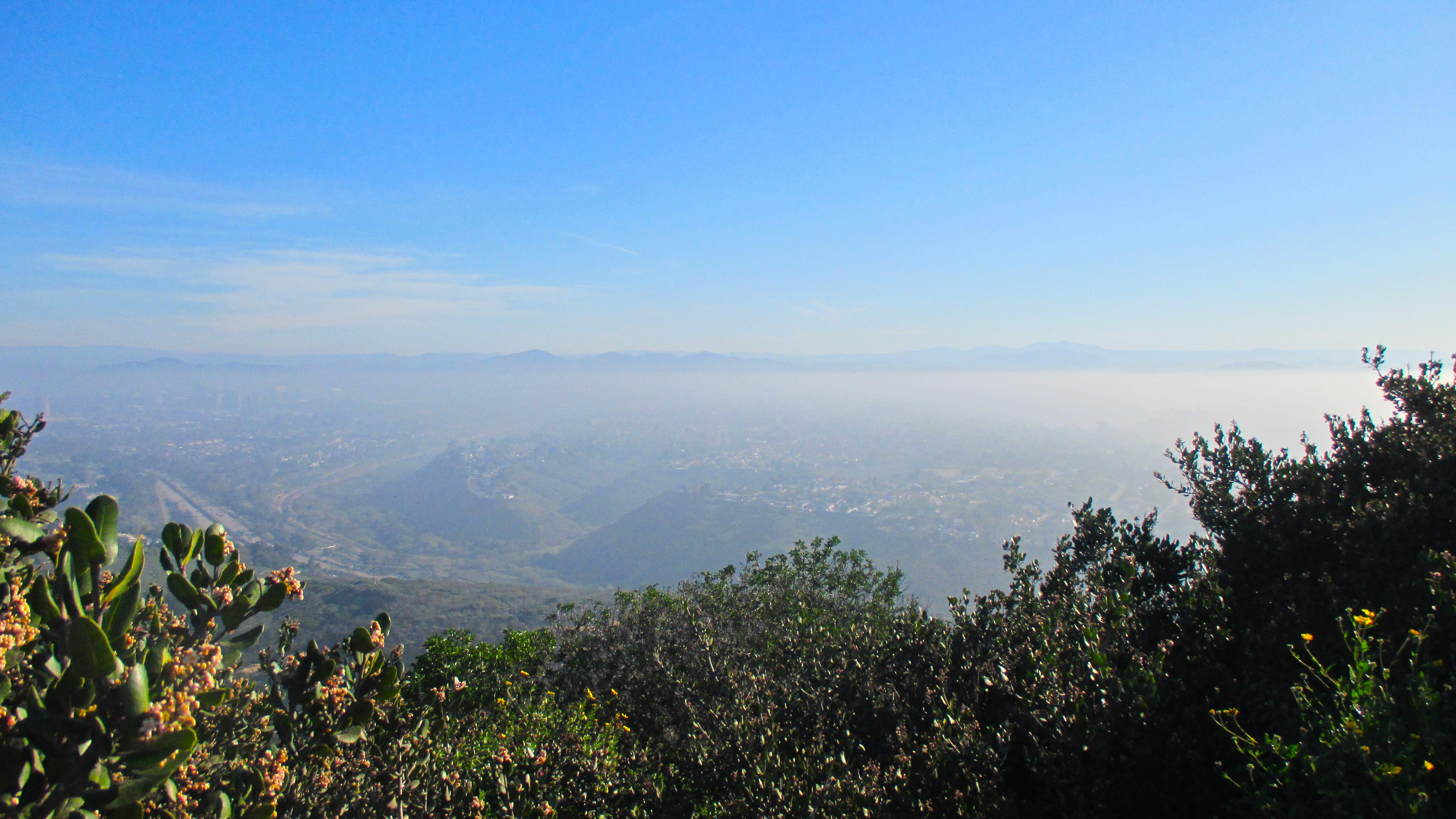 San Diego: La Jolla | Julie Journeys