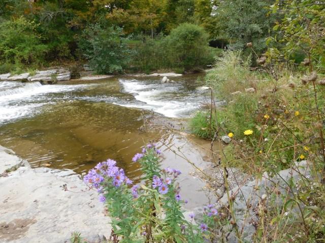Chittenango-Falls-state-Park-13
