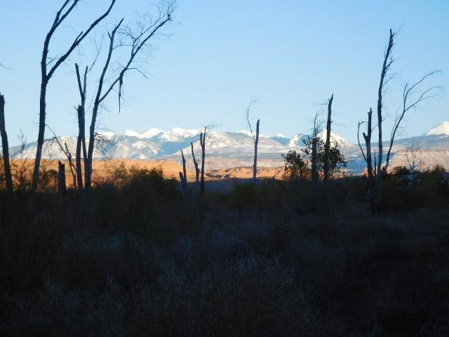 matheson_wetlands_preserve_moab_9