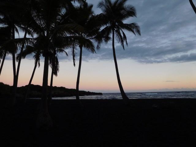 Punalu'u_Beach_