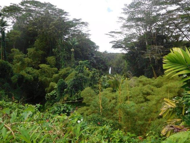 akaka_falls_big_island_1