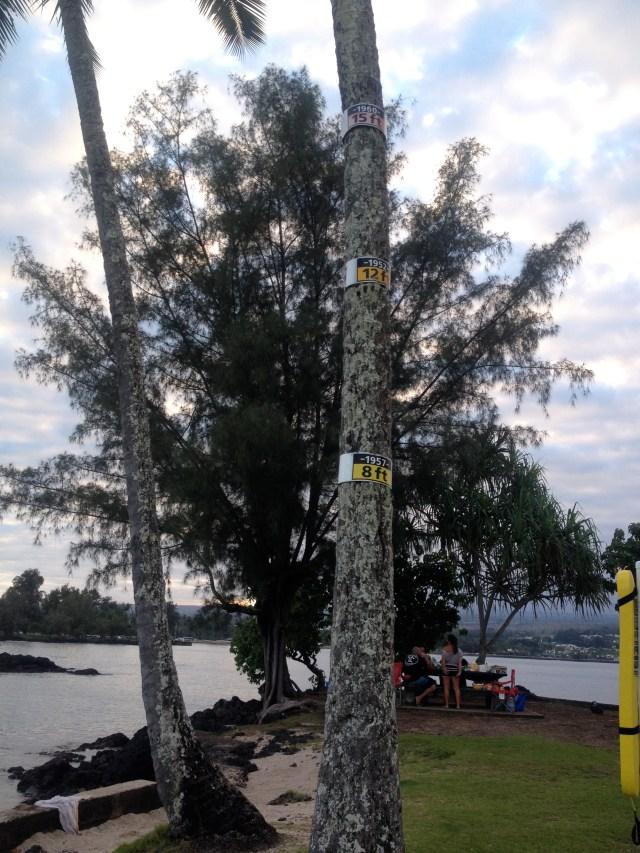 coconut_island_hilo