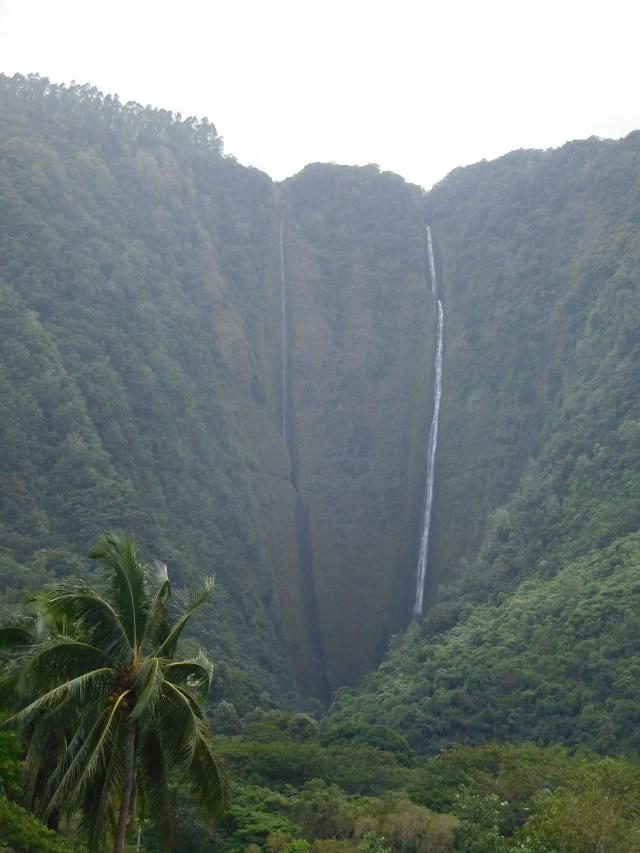 waipio_valley_5