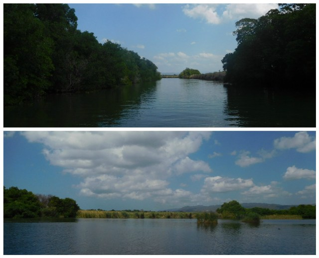 black_river_Jamaica_1