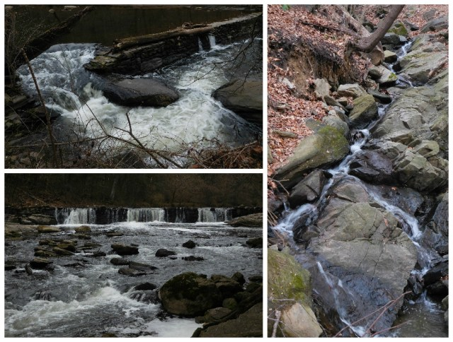 Wissahickon_Valley_Park_9