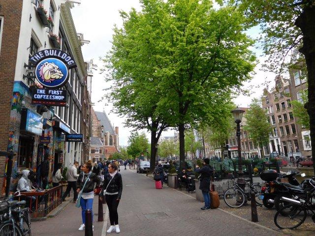 coffeeshop_amsterdam