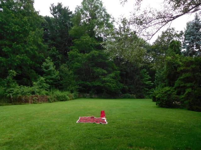Bailey_Arboretum_locust_valley