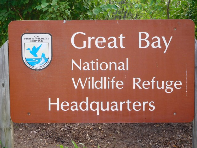 great_bay_national_wildlife_refuge_