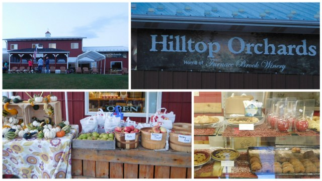 hilltop_orchards_berkshires_1