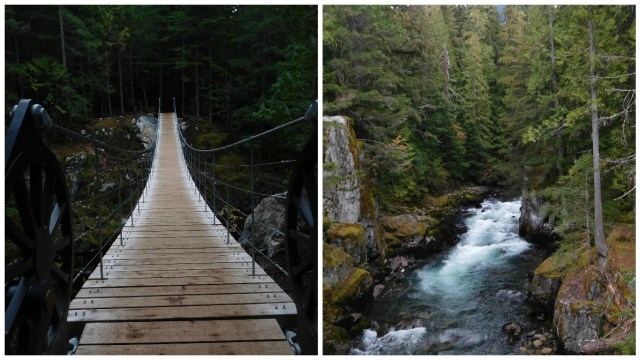whistler_train_wreck_suspension_bridge
