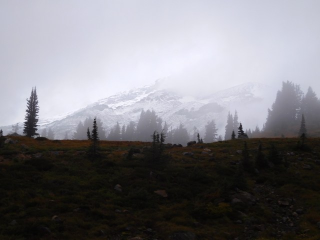 skyline_trail_mount_rainier_6