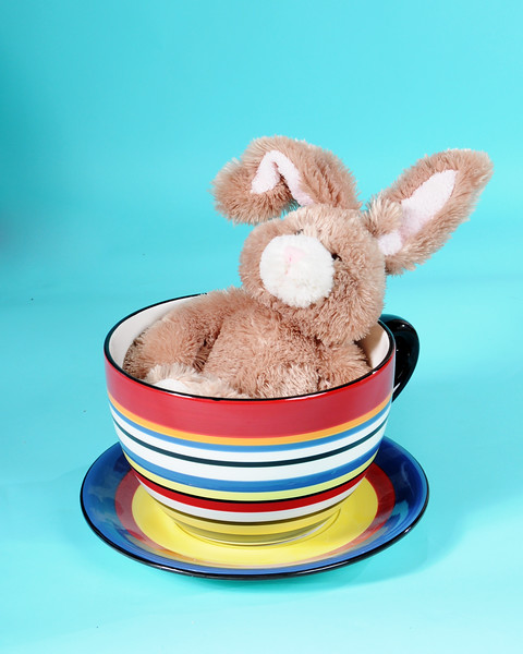 New prop, the cup, not the bunny. = )