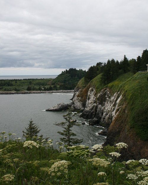 Cape Disappointment Coast photo by Julie Manthey