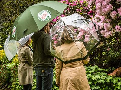 Seance photo famille au parc Emmanuel Liais à Cherbourg en normandie avec des parapluies