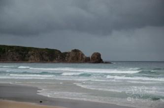 Cape Woolamai-0386